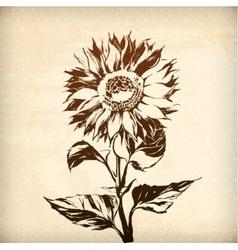 ornamental sunflower flower card vector image