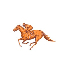 Jockey Horse Racing Drawing vector image