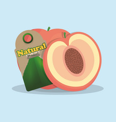 Apricot natural product tag market vector