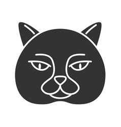 British shorthair cat glyph icon vector