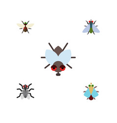 Flat icon buzz set of fly bluebottle gnat and vector
