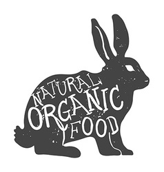 Hand Drawn Farm Animal Rabbit Natural Organic Food vector image