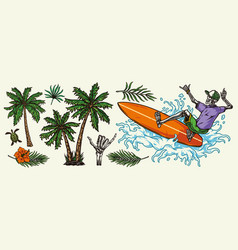 Hawaiian and surfing colorful elements concept vector
