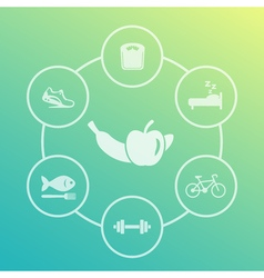 Healthy lifestyle icons set diet sleeping fitness vector image