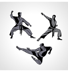 Martial arts poses silhouette karate fighters vector