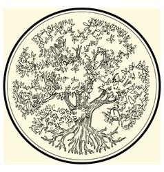 Tree Oak beech forest tree vector