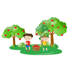 Two boys working in apple farm vector