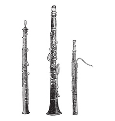 woodwind instruments vintage engraved vector image