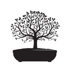 Black bonsai olive tree vector