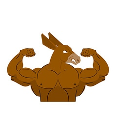 Wild strong donkey athlete Aggressive fitness vector image