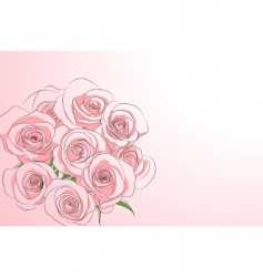 pink roses vector image