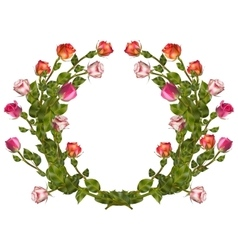 Wreath of roses isolated EPS 10 vector image vector image