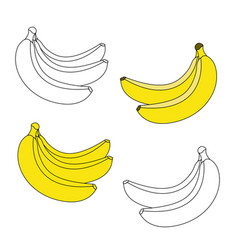 A bunch of three bananas and a bunch of two vector