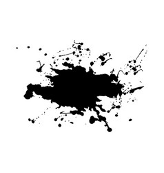 abstract splatter black color vector image