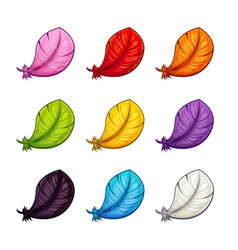 cartoon colorful feather icons set vector image