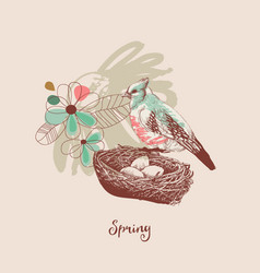 spring background a bird nest and flowers vector image