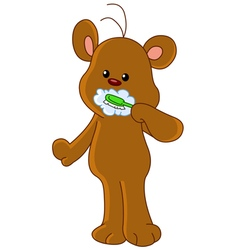 teddy bear brushing teeth vector image