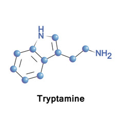 tryptamine is a monoamine alkaloid vector image vector image