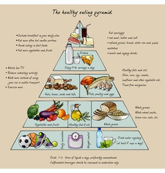 healthy eating pyramid vector image vector image