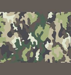 Abstract military or hunting camouflage vector
