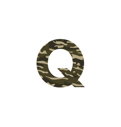 camouflage logo letter q vector image