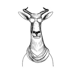 Hand drawn head antelope vector