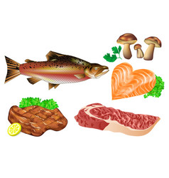 Meat fish mushrooms vector