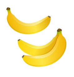 Realistic yellow bananas isolated on white vector