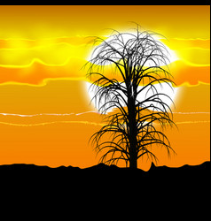 Several tree silhouette under the african sun and vector