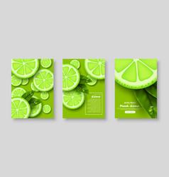 sliced lime poster set vector image