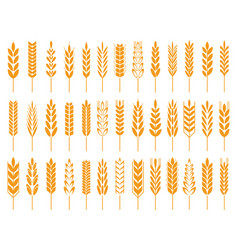 Wheat grain icons wheats bread logo farm grains vector