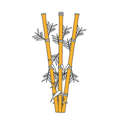 Color graphic of bamboo stems with leaves vector