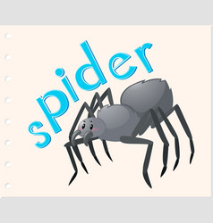 animal word card with spider vector image