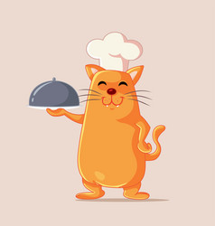 chef cat holding food plate cartoon vector image