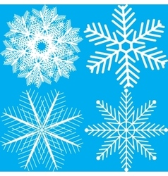 Collection of White Snowflakes vector image