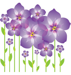 purple abstract flowers vector image