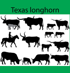 Texas longhorn cattle silhouettes vector