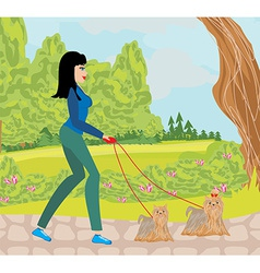 Walk the dogs in the park vector