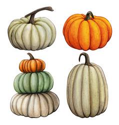 Watercolor hand drawn fall pumpkin composition vector