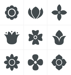 Flower Icons Set Design vector image vector image