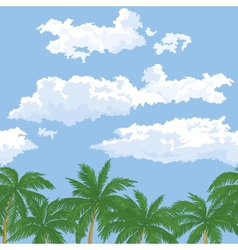 Palm trees and sky with clouds vector image vector image