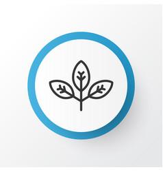 branch icon symbol premium quality isolated vector image