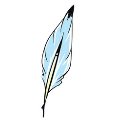 A blue feather or color vector