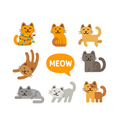 Cats characters different breeds vector