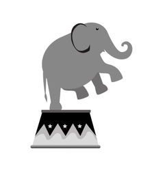Elephant circus entertainment icon vector