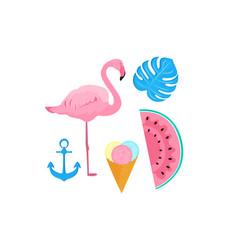 flamingo ice cream watermelon anchor monstera vector image