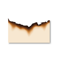 Piece paper with burnt edges isolated page vector