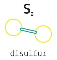 S2 disulfur molecule vector image