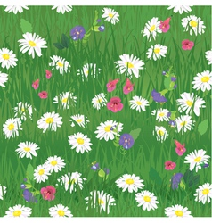 Seamless pattern - texture of grass and wild flowe vector