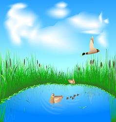 lake and ducks vector image vector image